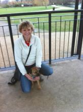 Debbie and Monty the Border Terrier