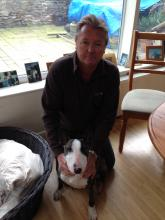 Mike and Dolly the English Bull Terrier
