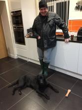 Lola the Black Labrador